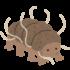 最強!? 全然死なない虫「クマムシ」。寿命はどのくらい? 弱点はなんだ?